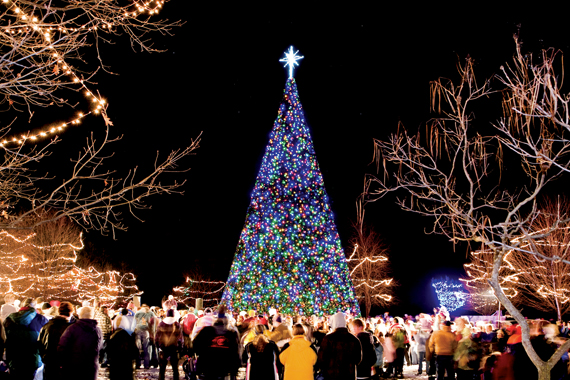 Merry & Bright! The number of lights on the famous 'Tree of Lights' at Crossroads Village is the subject of a contest!