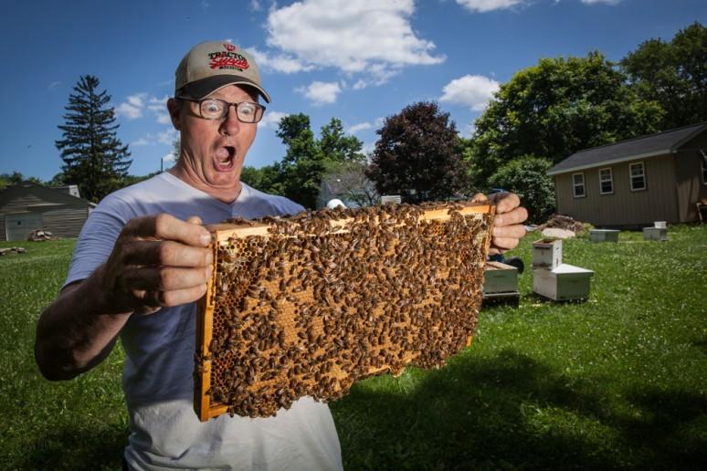 beekeeper-3
