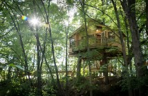 formartreehouse-8