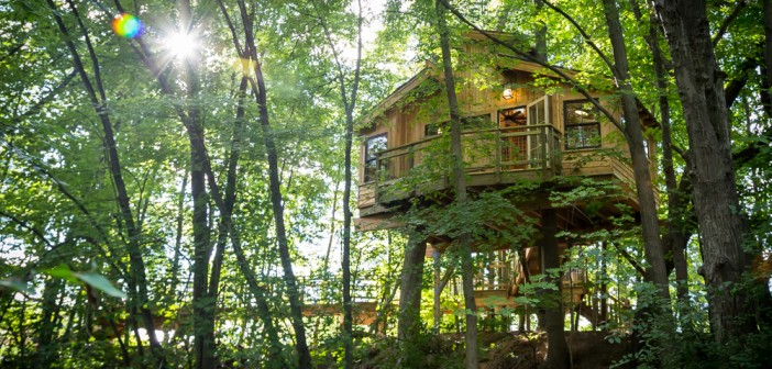 formartreehouse-5
