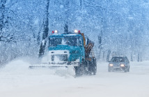 Perutskyi Petro / Shutterstock.com