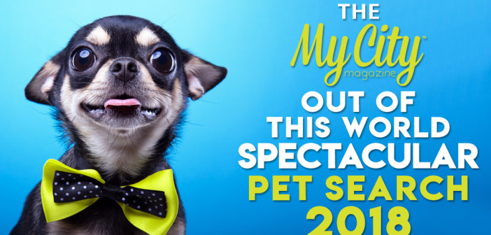 The My City Magazine Out of this World Spectacular Pet Search 2018