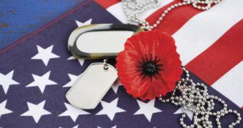 Milleflore Images / Shutterstock.com