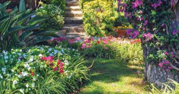 Home and Garden 2020