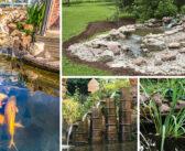 Building a Backyard Water World